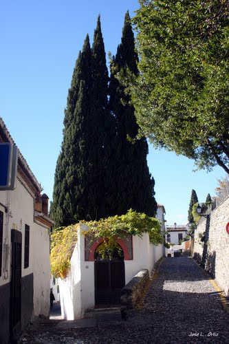 Carril de San Agustin