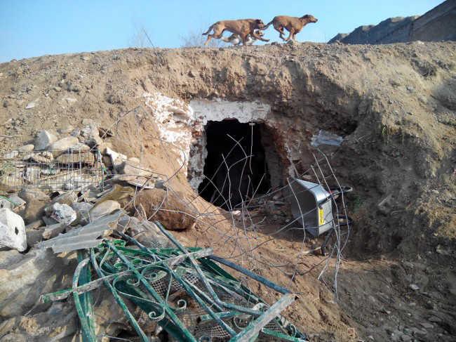 Exterior de una de las cuevas selladas ayer tras el desalojo. Foto: GranadaiMedia