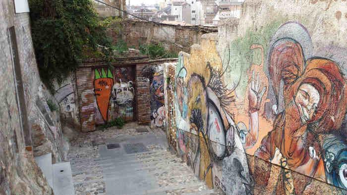 Pintadas bajando Barranco Tello. 2014