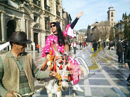 Burro taxi en Plaza Nueva durante una despedida soltero en Granada