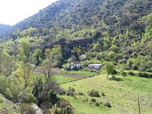 El Valle del Darro estaba todo cultivado. Ahora sólo quedan algunos huertos familiares
