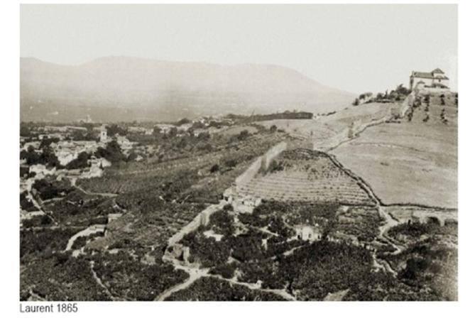 Cerro del Aceituno fotografiado por Laurent en 1865