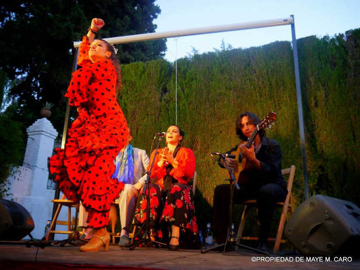 Imagen de la Noche Flamenca celebrada el 13 de junio.