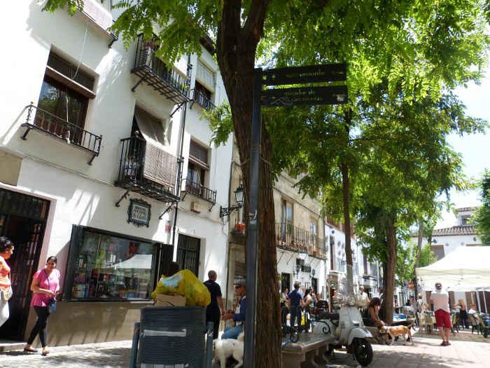 Basuras en Plaza Larga GD 2014