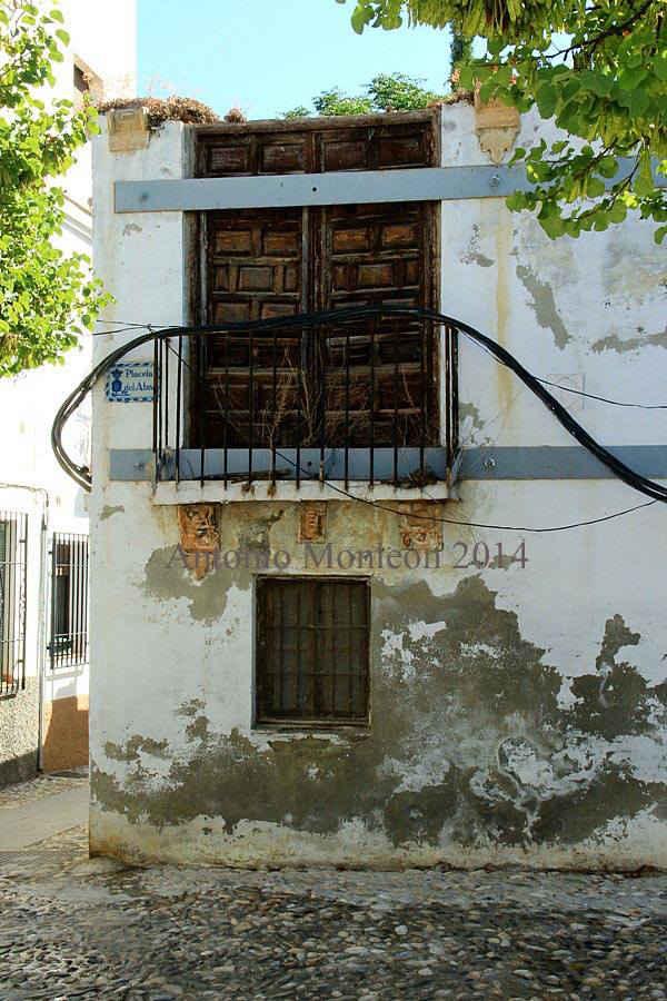 Placeta del Abad 2014