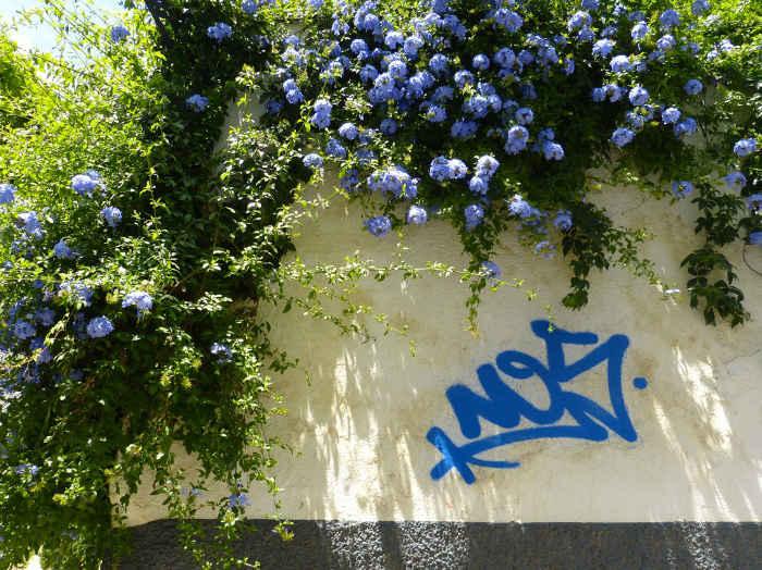 Pintada en un muro de la calle  Almirante GD 2014