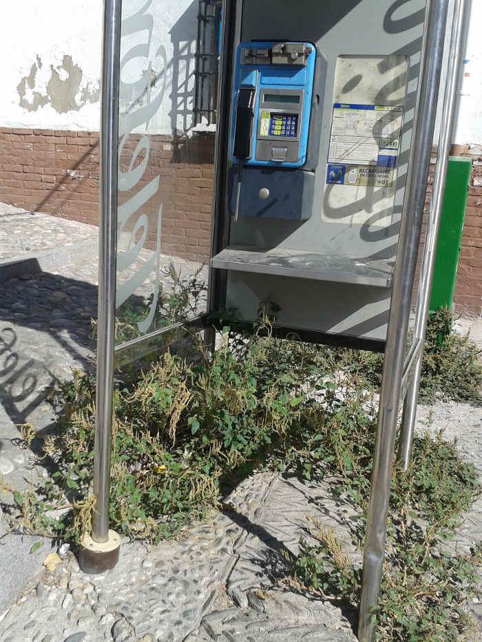 Las hierbas invaden la cabina telefónica y el buzón de Correos en la Cuesta del Chapiz  20140912