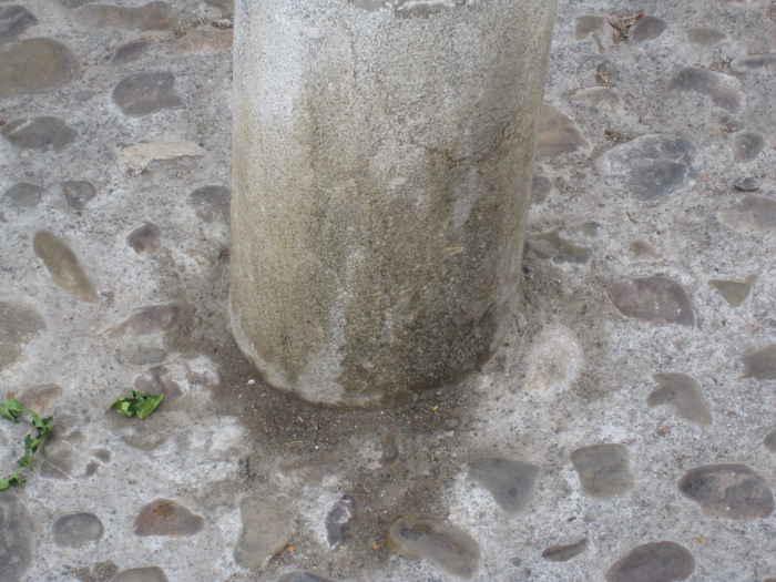 Meadas de perro en los hitos de piedra de la calle San José  2014