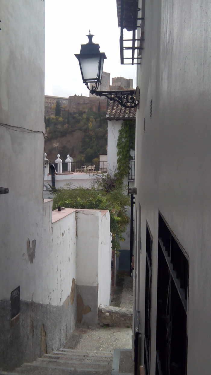 La Alhambra se adivina 20141123