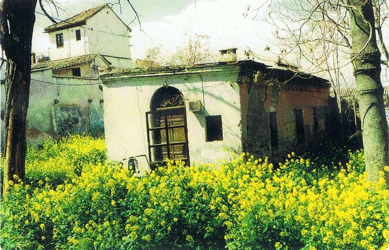 Casa Anonina Rodrigo C Gallo 1996b