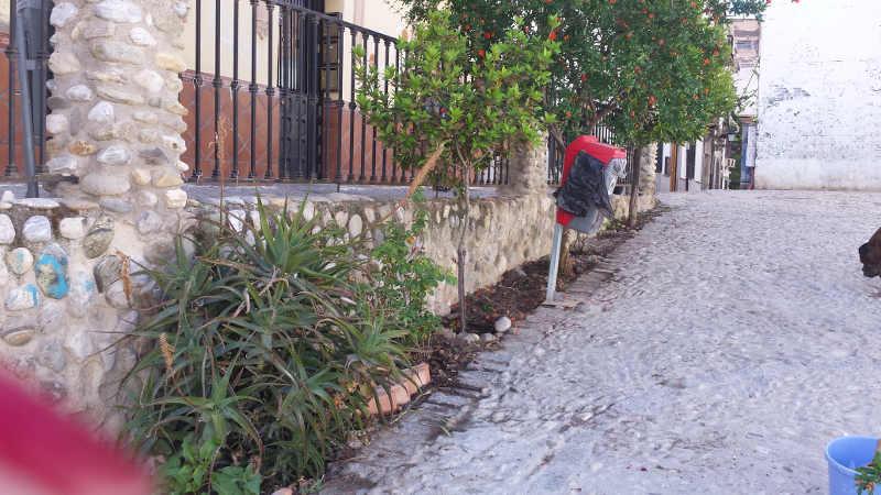 limpeza jardines Molino Corteza 20150516 a