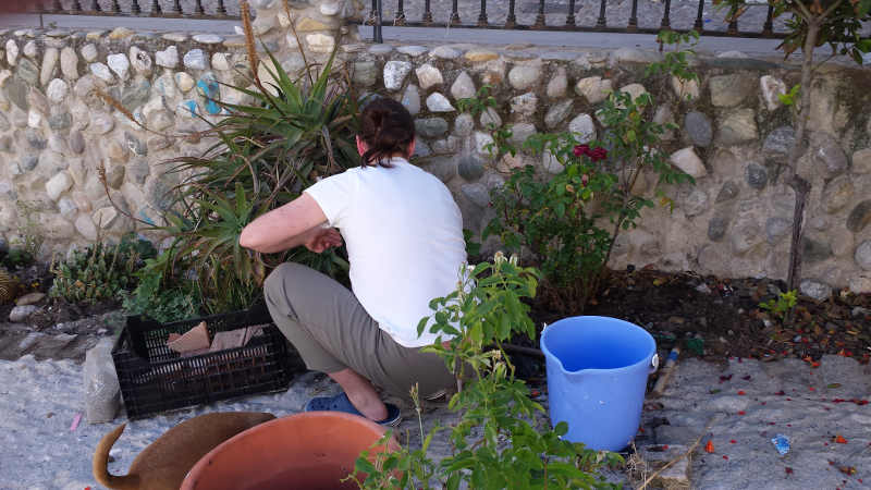 limpeza jardines Molino Corteza 20150516 b
