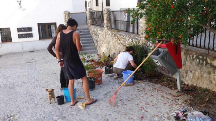 Parques y jardines bajo albayz n - Plantas para arriates ...