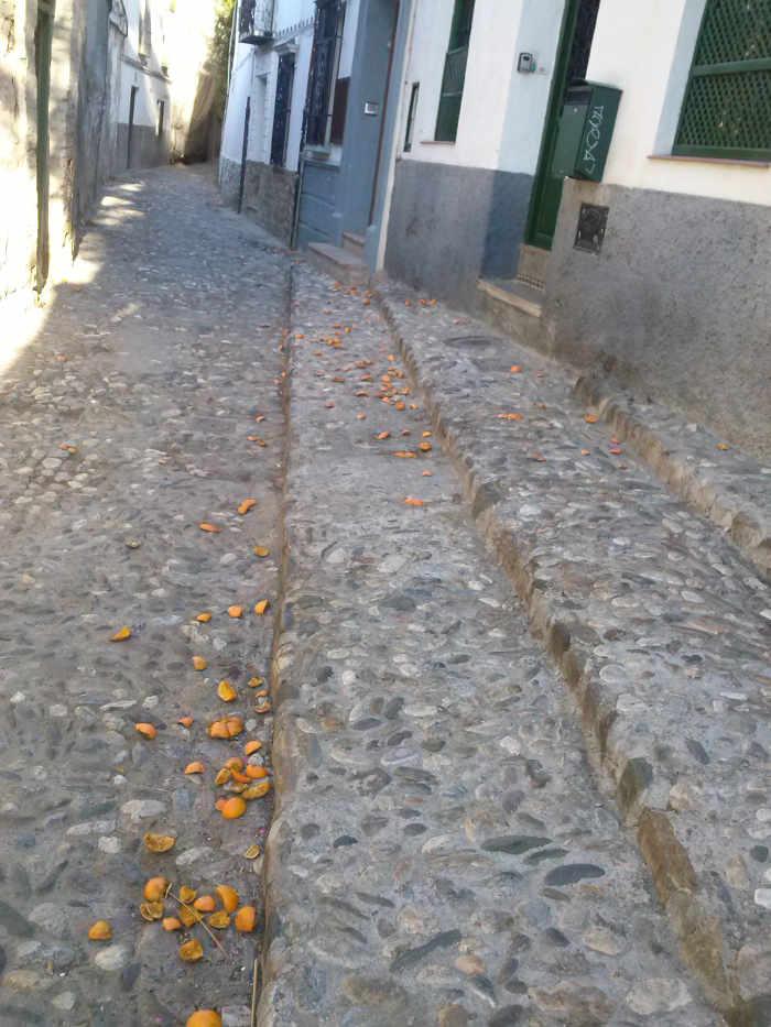 Basura carrera calle Guinea 20150602 c