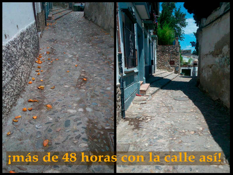 basura naranjas carrera dos colinas 2015 a