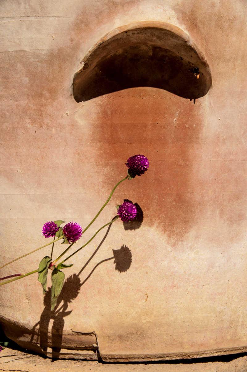 154. ALARIFE: Rojo Alhambra verde vida