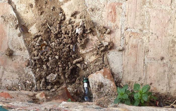 basura Lavadero de la Manchega 20151122