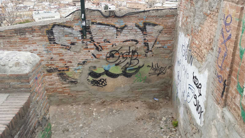pintadas-ladron-del-agua-20161205